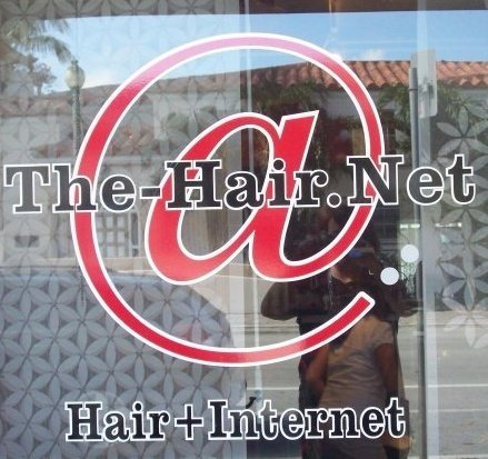 @ The Hair .Net