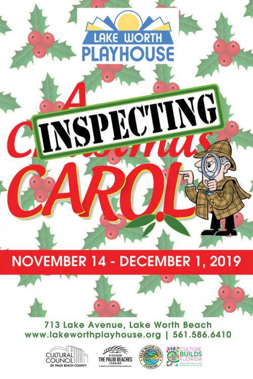 Inspecting Carol Poster